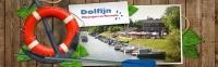 thumb_Dolfin-logo